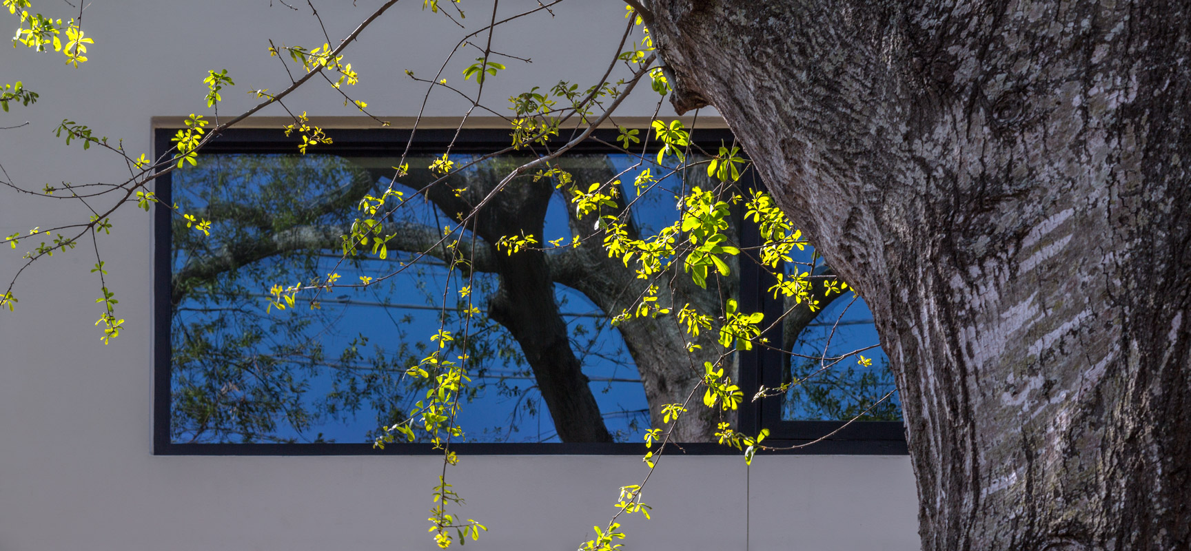studioraheel architectural photography