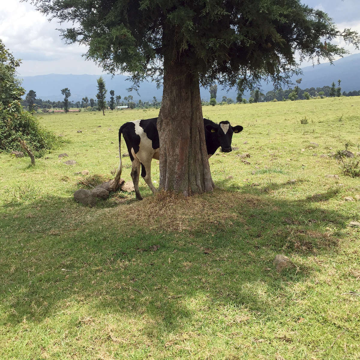 1_ST_Rwanda_IMG_8810_ST