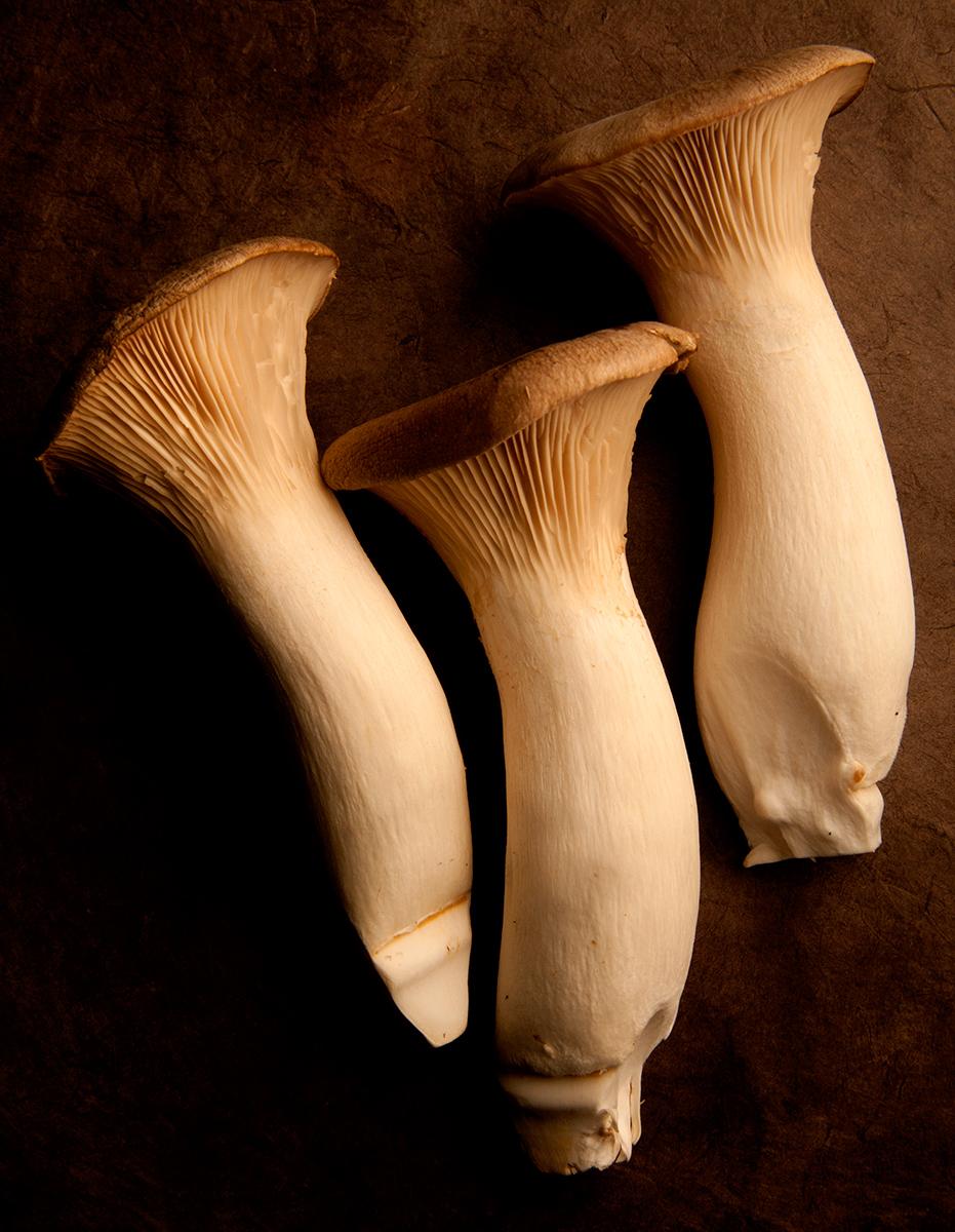 Mushrooms-Carl Kravats Food Photography
