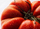 Tomato-Carl Kravats Food Photography