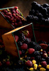 Berries-Carl-Kravats-Photography