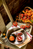 Persimons-Blood-oranges-kumquats-Carl-Kravats-Photography