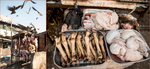 India-Butchers-Carl-Kravats-Photography