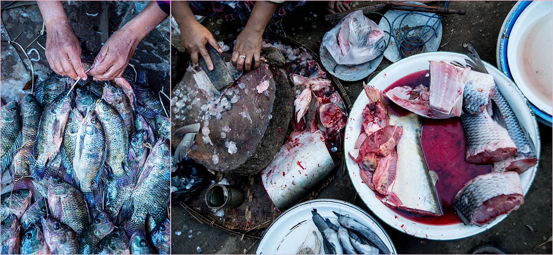Myanmar: Fish market