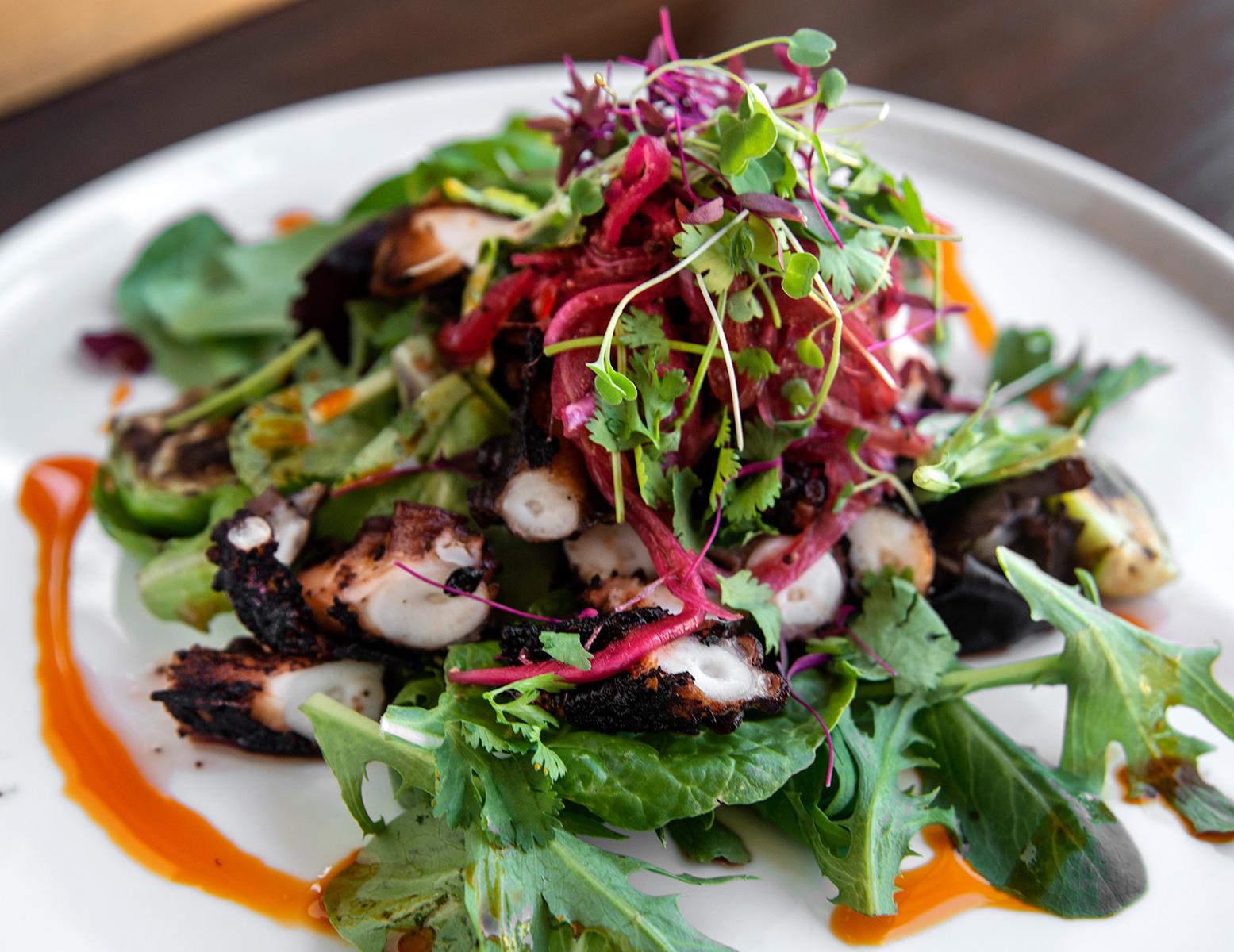 Octopus-salad