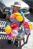 Puerto-Nuevo-Mexico-flower-Lady