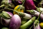 eggplants-CU765