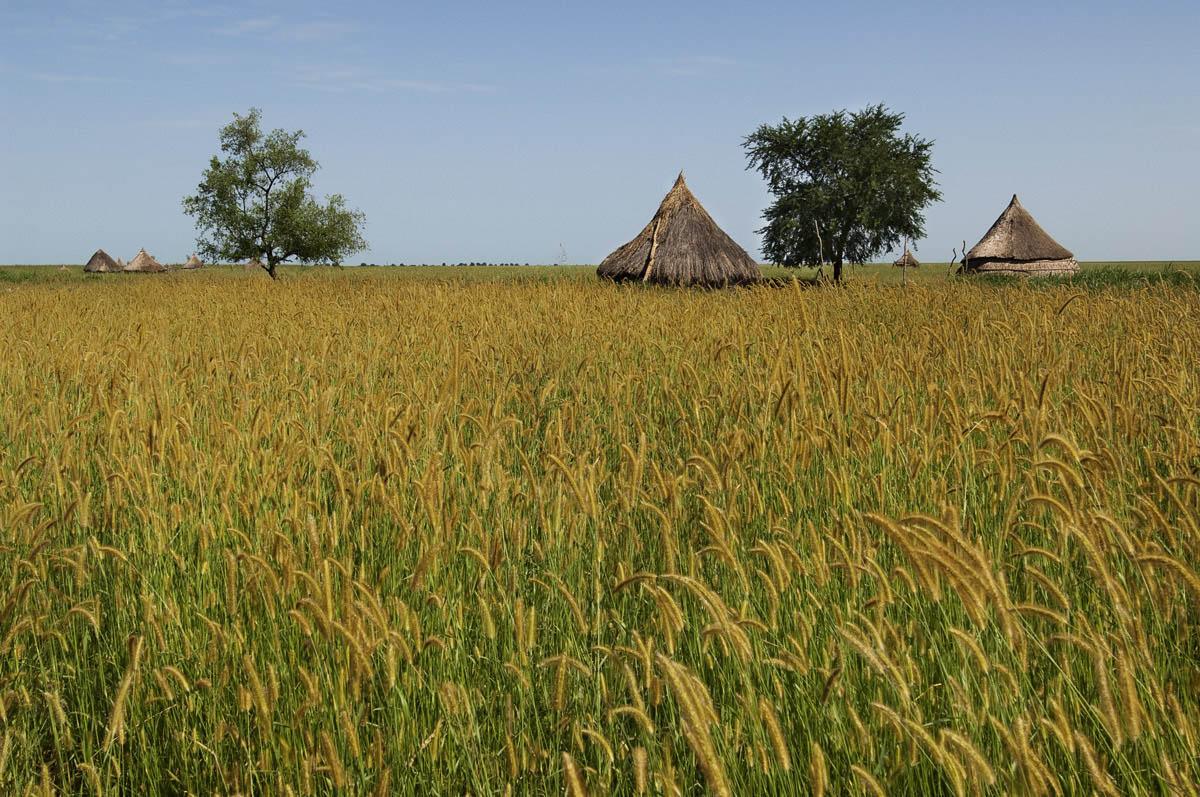 Wungak, Upper Nile State
