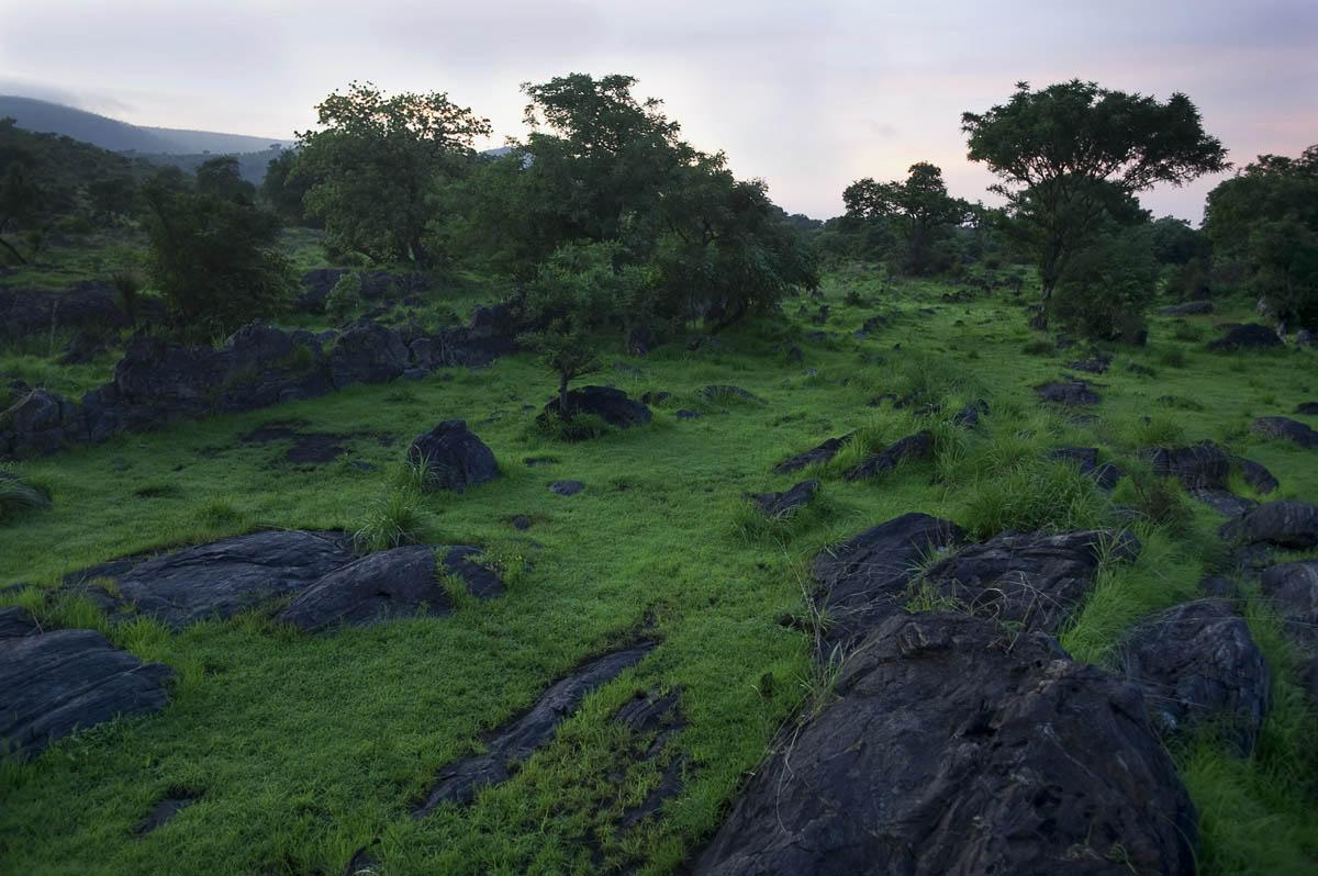 Nimule National ParkEastern Equatoria State