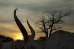 Cattle CampWarrap State