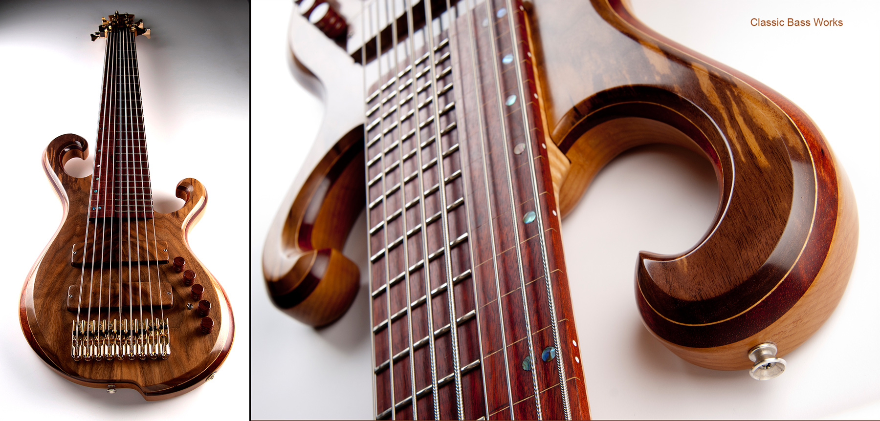 Classic Bas Works 9 String-Musicman Photography