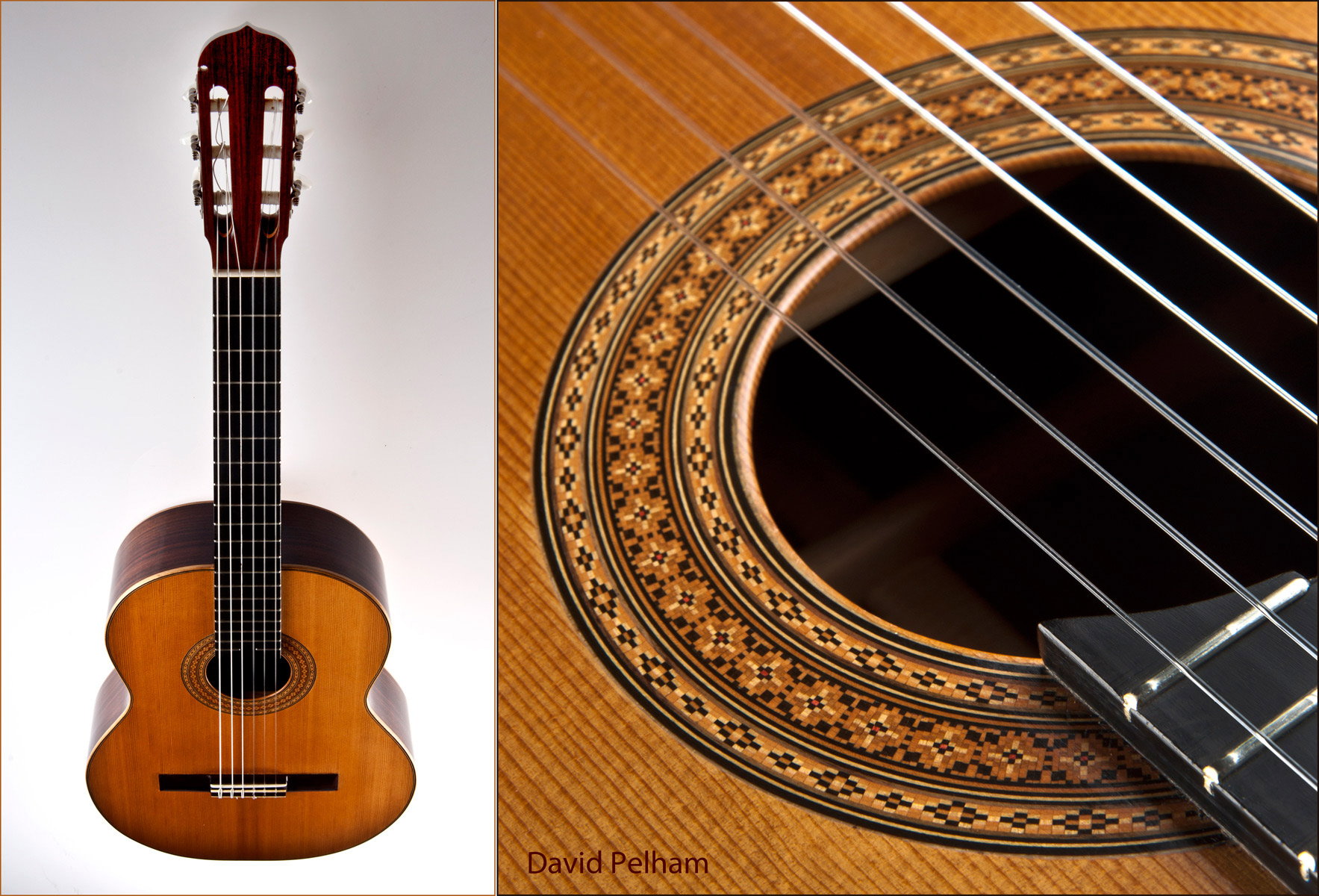 David Pelham Guitar-MusicMan Photography