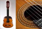 David Pelham Guitar-MusicMan Photography