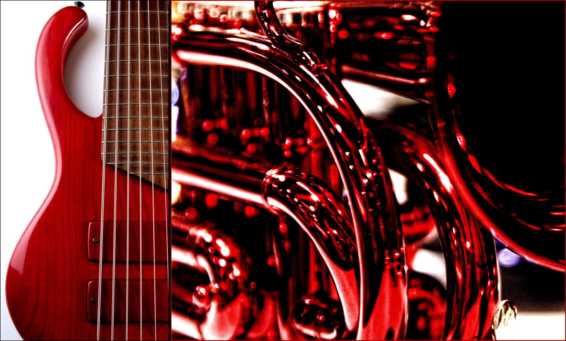 Red Instruments-Musicman Photography