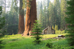 Yosemite-2013