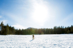 tahoe-love-engagement-4-weddings
