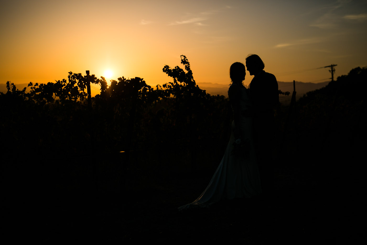 wedding_sonoma_california_Joy