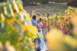wedding_sonoma_california_Joy1