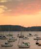 Pink Cloud Malletts Bay
