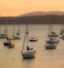 Morning Glow Malletts Bay