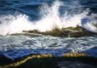 Light_Wave-