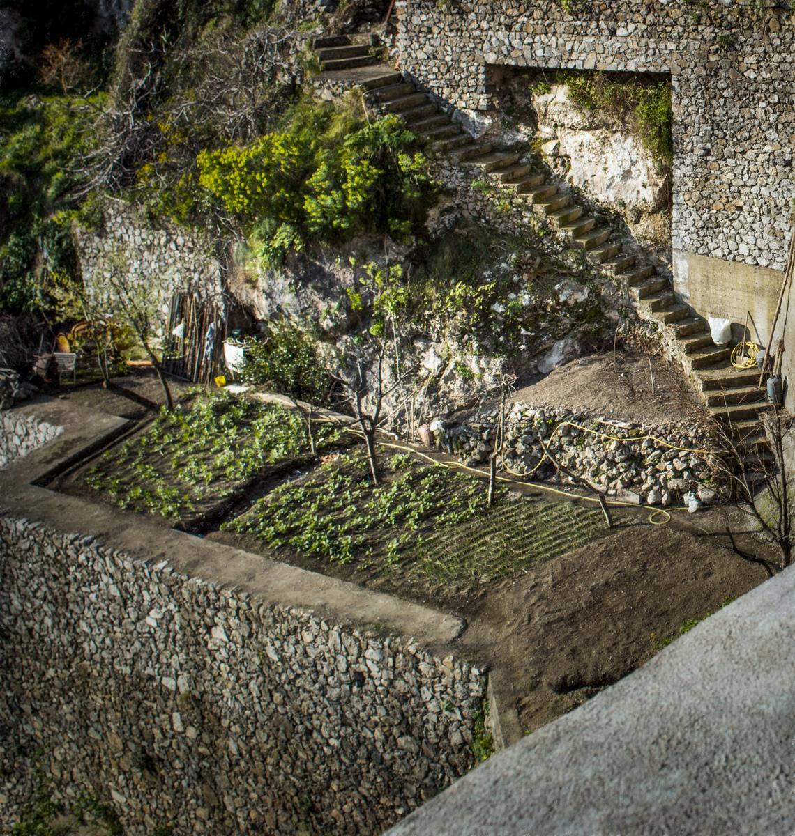 Positano_Stairs_Garden-