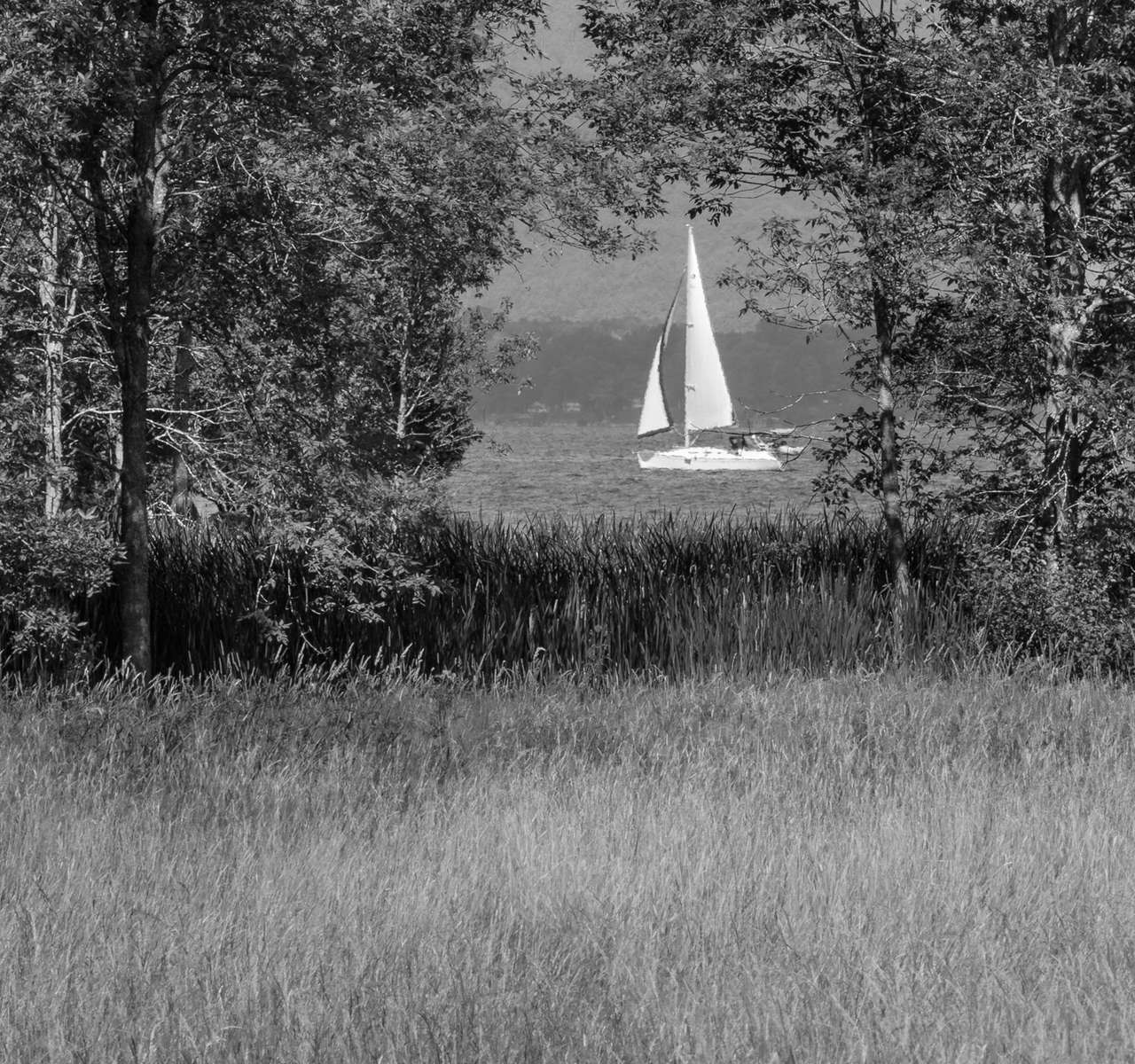 Sailing by Shelburne Farms 20