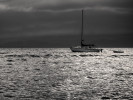 Two_Anchored-