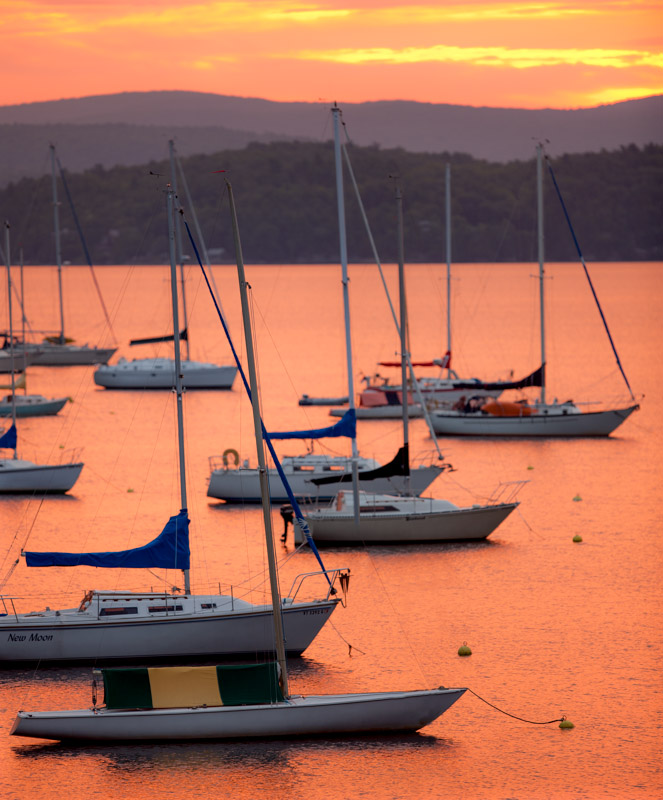 Orange Malletts Bay Morning