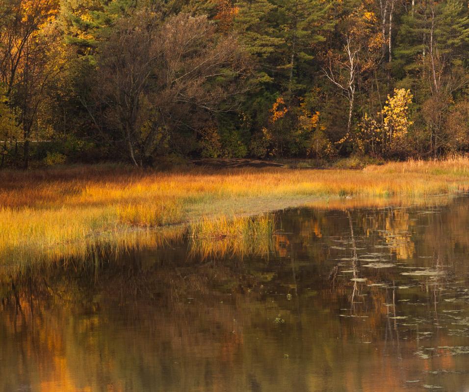 Shelburne Bay Fall Reflection