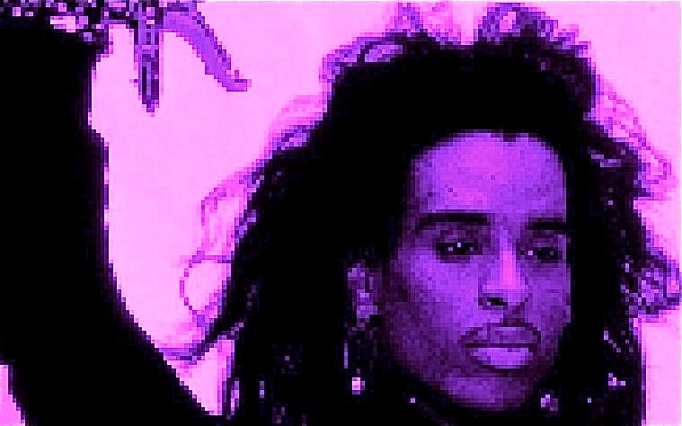 Willi-Ninja-Purple