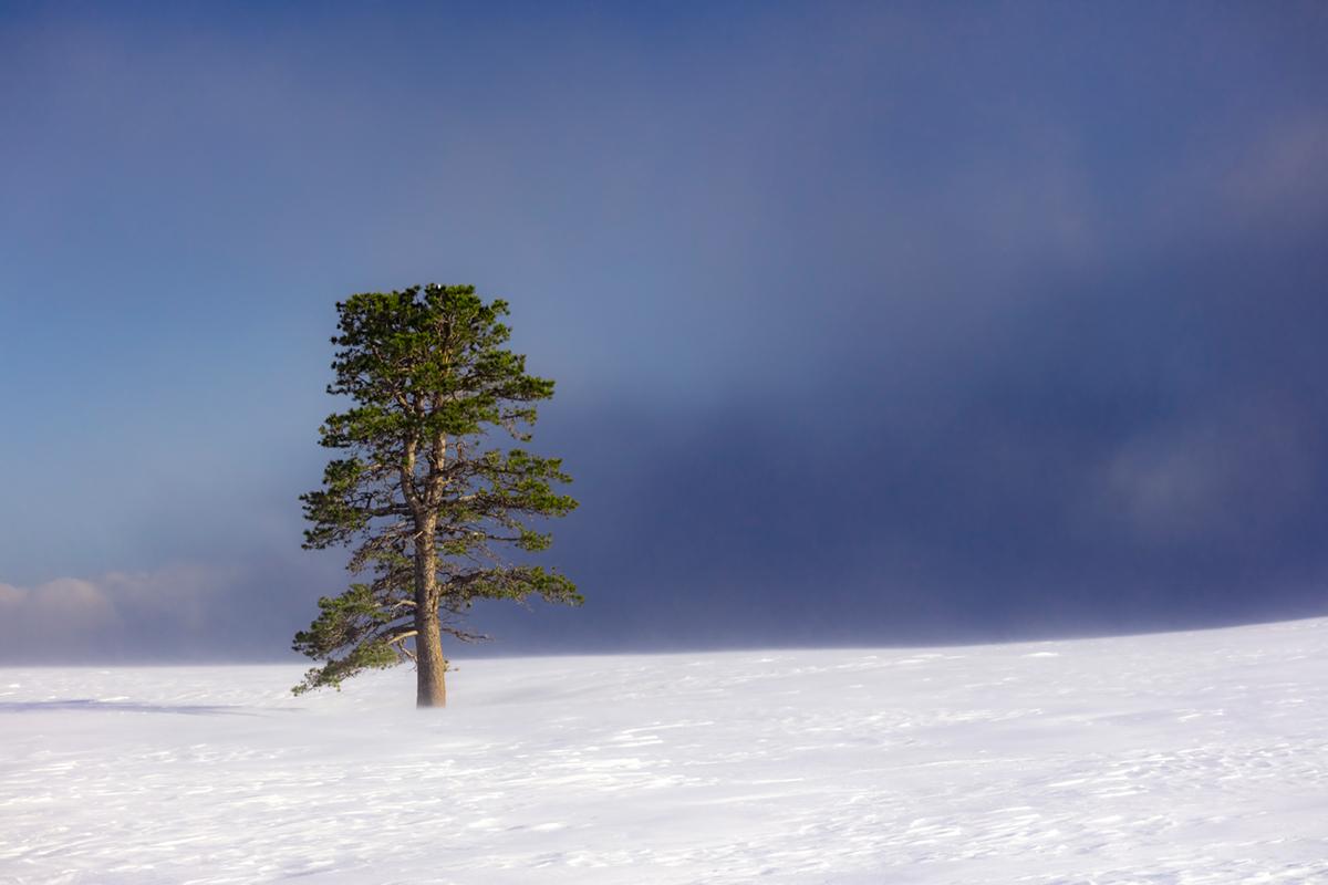 Sierra Mountains Highway 395, California