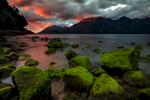 Pumalin Patagonia, Chile