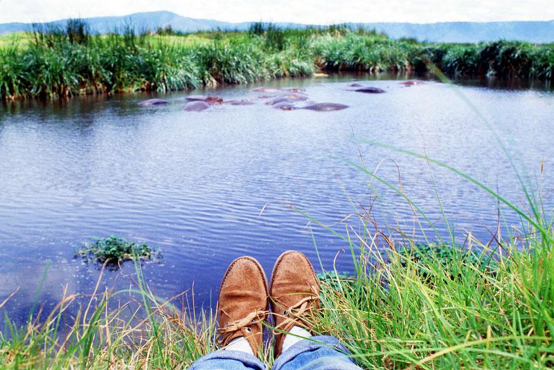 Hippo pond in Kenya