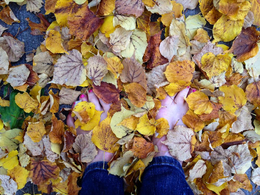 leavesFeet