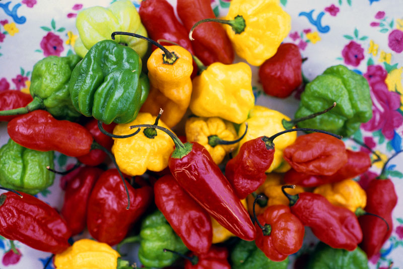 hot peppers in negril