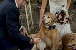 Lima-Wedding--841
