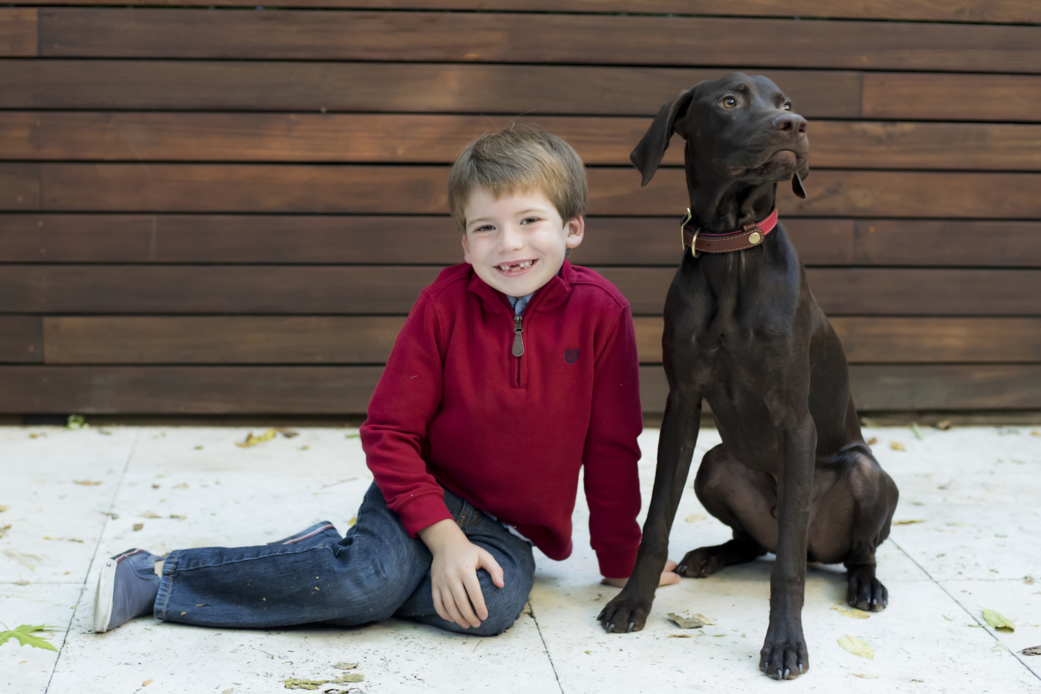 A boy and his dog during their family photo shoot