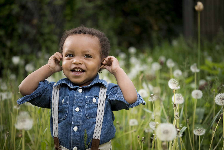 toddler in field of dandelions in Brookyln, family portraits