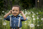 toddler in field of dandelions in Brookyln, family portraits