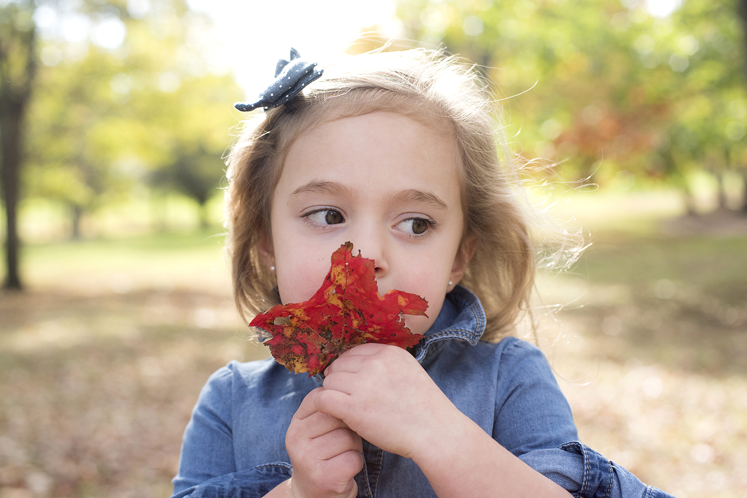child playing with fall leaves in New Jersey park, family portraits