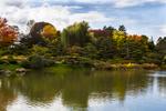 Autumn Trees on Lake