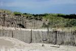 Fence on a Sandy Beach Cape Cod