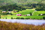 Countryside View Along Fijord