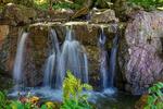 Waterfall on Rocks Botanical Garden