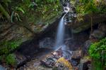 El Yunque Rain Forest Puerto Rico Waterfall