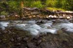 Rushing Stream Ashcroft Ghost Town Near Aspen, CO