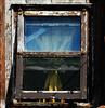 Window with Curtin