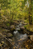 Walking Path Beaver Creek Resort