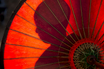 Monk behind Umbrella